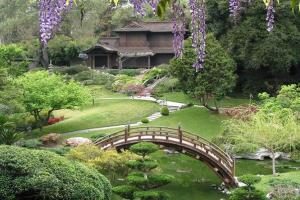Huntington's Japanese Gardens