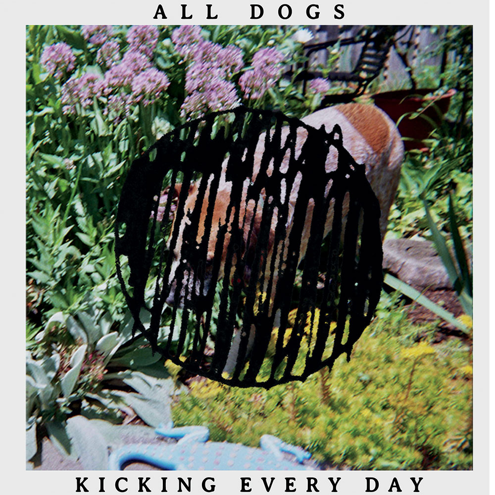 all dogs