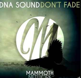 DNA Sound – Don't Fade