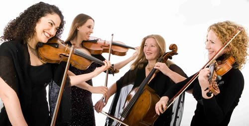 Petit Four String Quartet