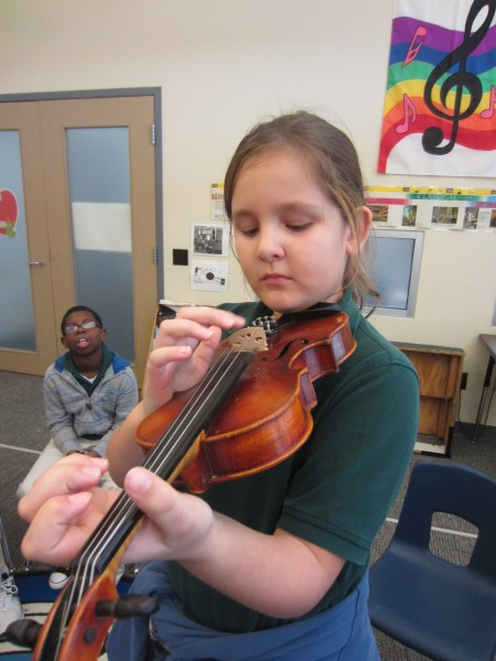 Violin Being Plucked