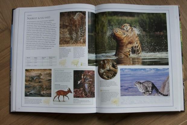 loomade atlas 083_v