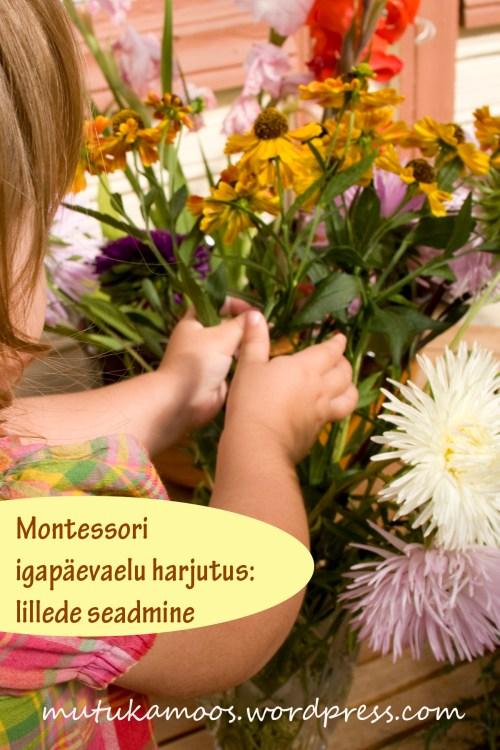 montessori lillede seadmine