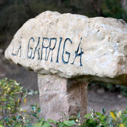 Mr_Wonderful_La_Garriga_de_castelladral_013