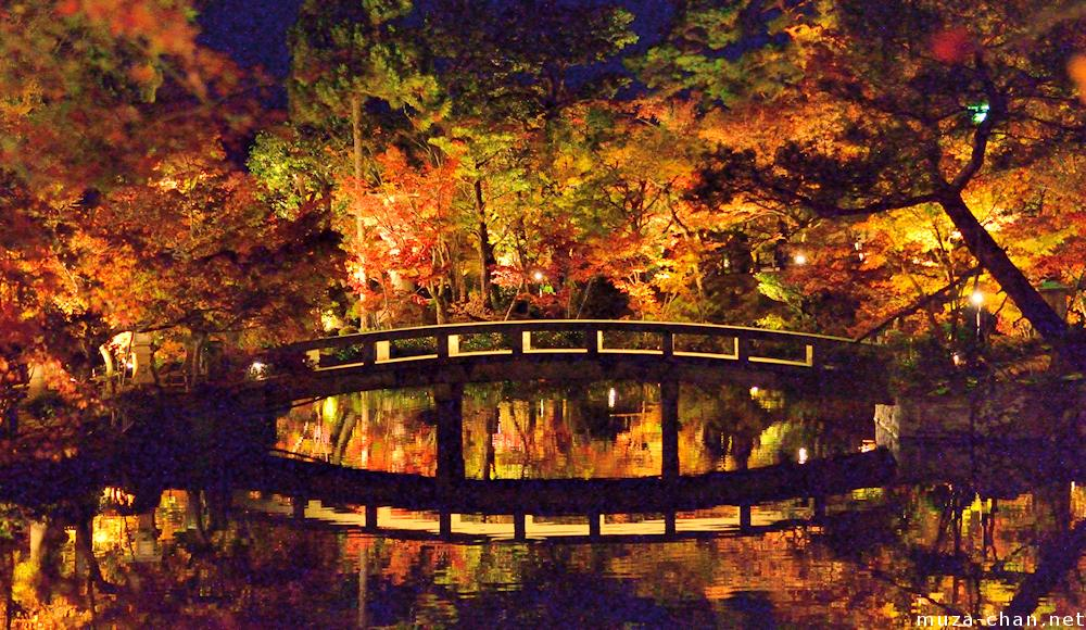 Fall Autumn Hd Wallpaper 1920x1080 Surreal Autumn Night At Eikando Kyoto
