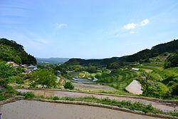 Rice_Terrace_in_Kumenan_Town.jpg