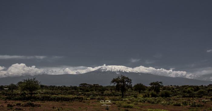 Amboseli_Onetouch_Live-4
