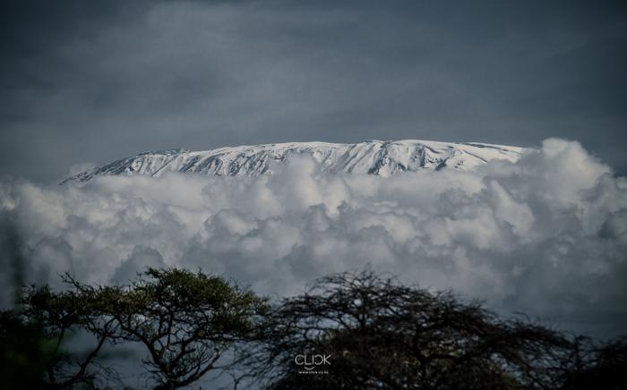 Amboseli_Onetouch_Live-6