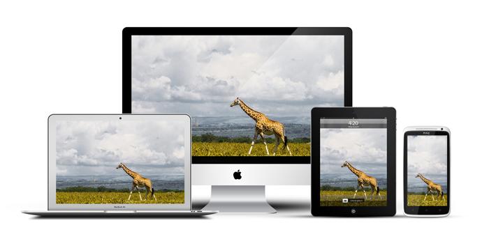 African_Screens_Wallpapers-Nakuru_Giraffe-Devices