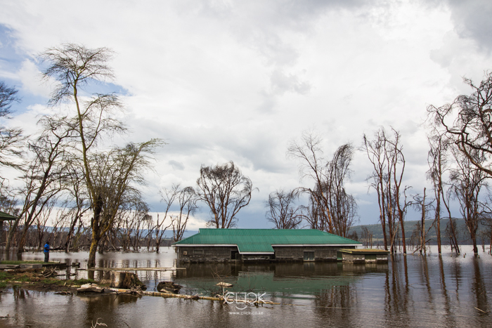Lake_Nakuru_Flood-24
