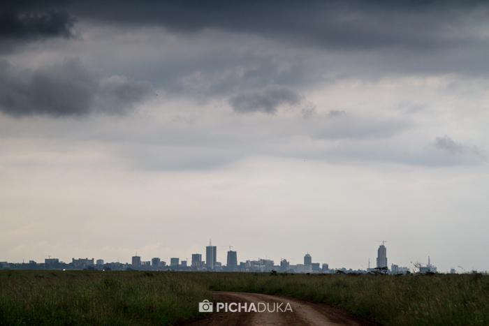 Nairobi_National_Park-20