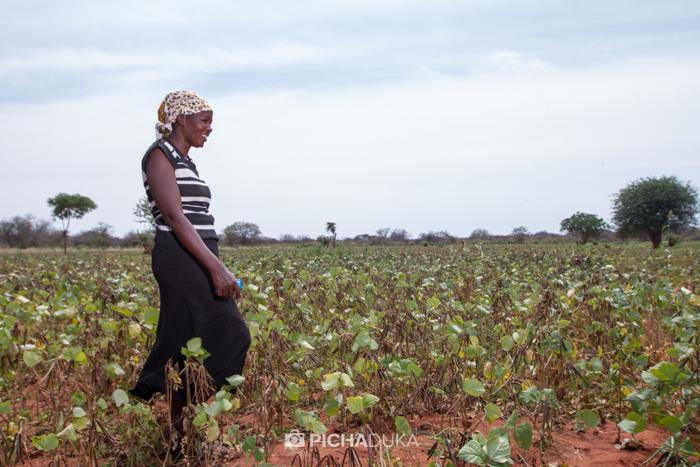 Farm_Africa_Kitui_by_Mwangi_Kirubi-18