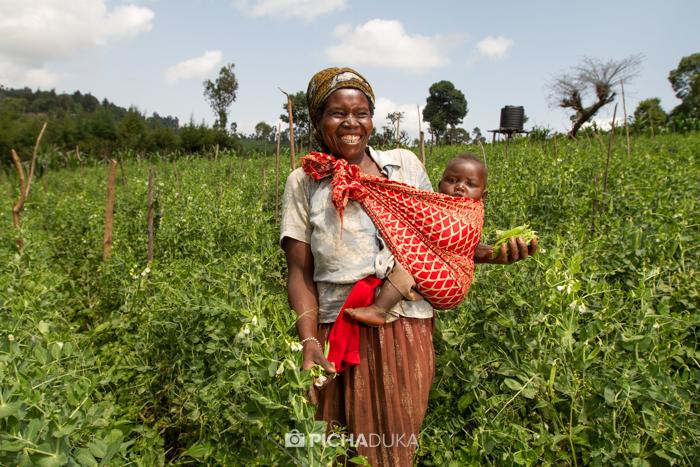 Farm_Africa_Western_Kenya_by_Mwangi_Kirubi-1