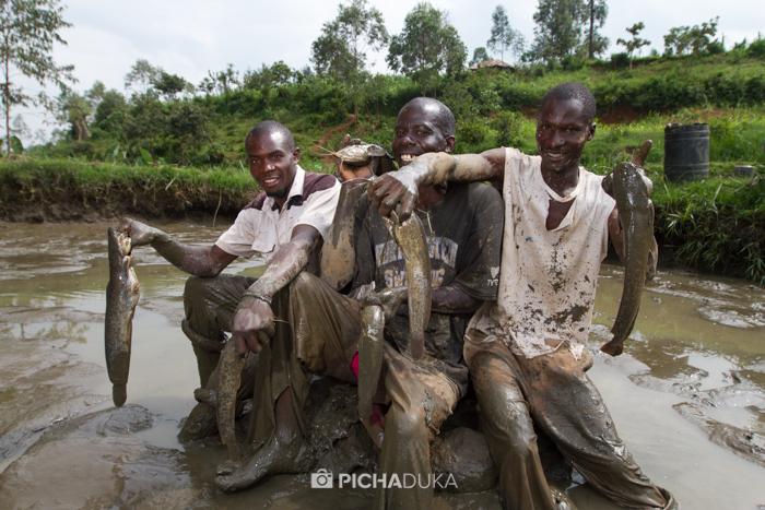 Farm_Africa_Western_Kenya_by_Mwangi_Kirubi-19