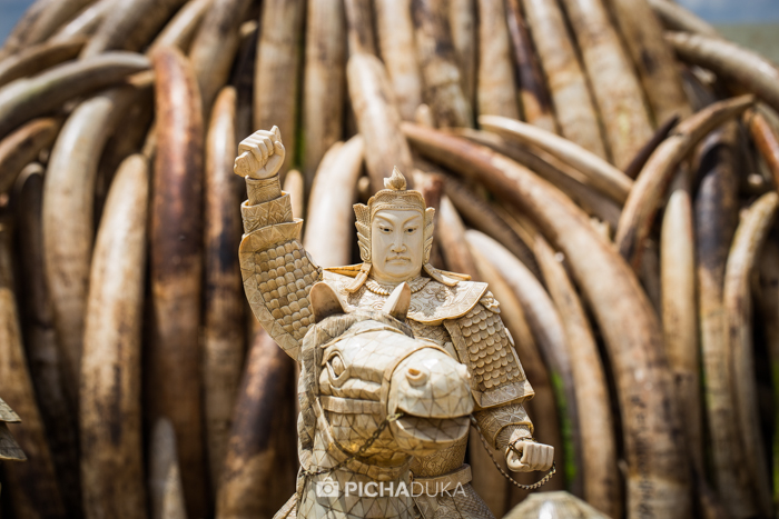 Ivory-Burn-Kenya-13