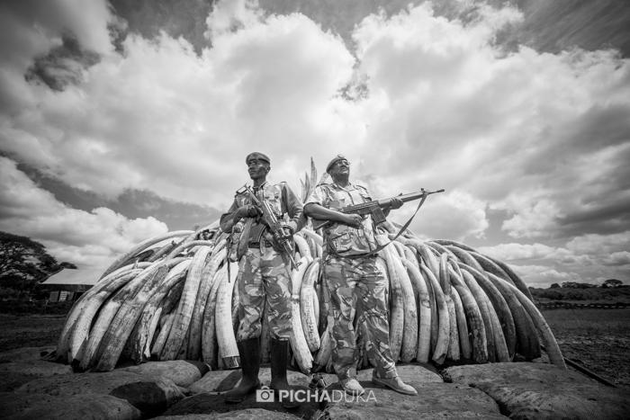 Ivory-Burn-Kenya-5
