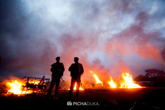 Kenya-Ivory-Burning-39
