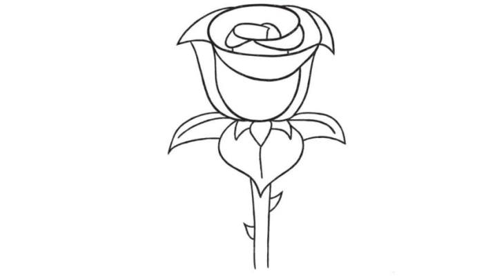 How To Draw A Rose – On A Stem
