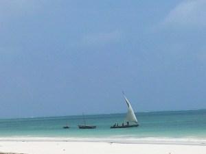 20140206 085523 300x225 Zanzibar   avant de partir