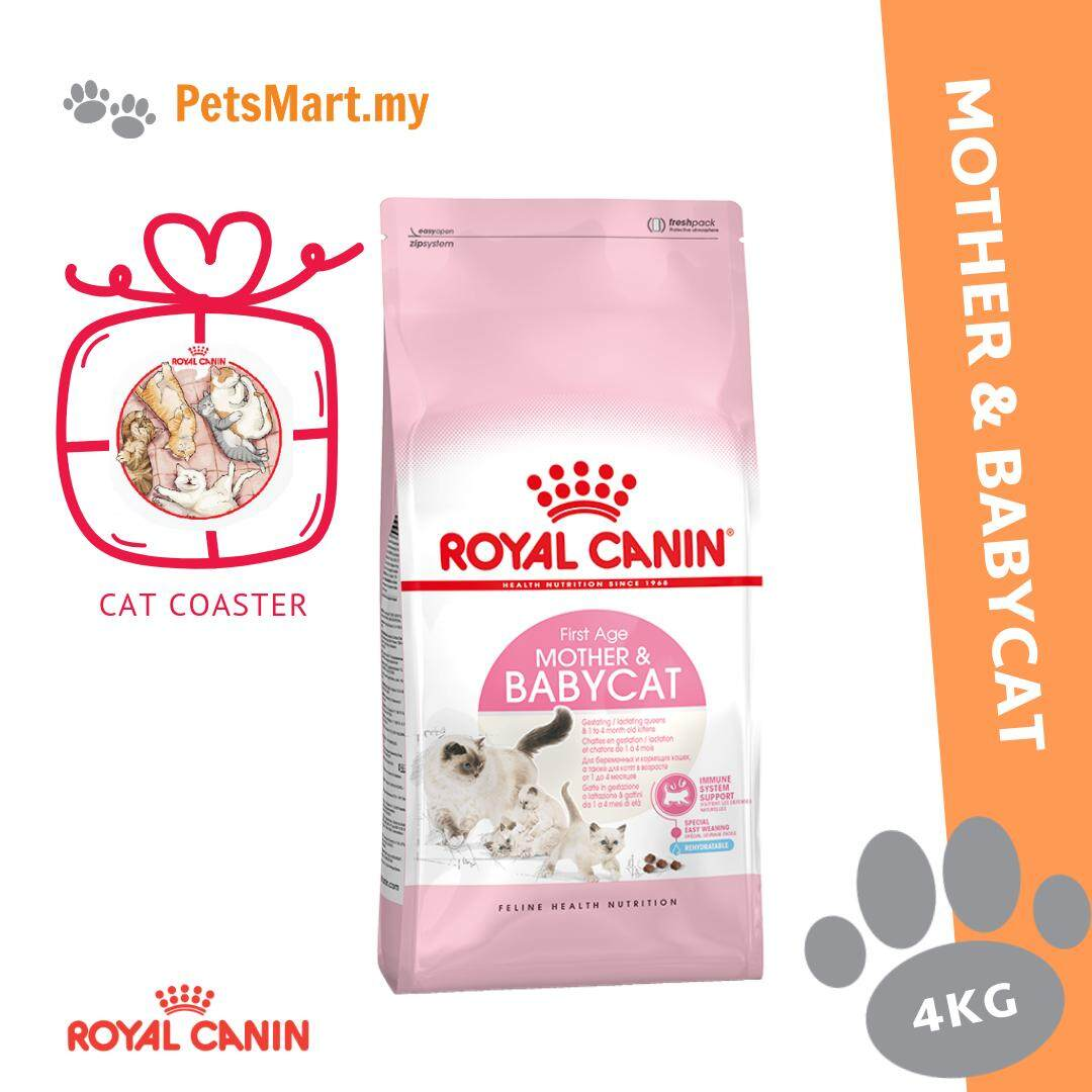 Harga Cat 20 Kg Royal Canin Mother Babycat 4kg Dry Cat Food Free Cat Coaster