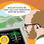 ILLUSTRATION: Norm Wickett studies plant genetics on his computer.