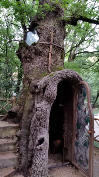 Religious shrine built inside a 450-year-old Quercus hartwissiana at Kutaisi Botanical Garden.