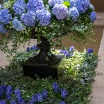 PHOTO: Blue hydrangea planter by Craig Bergmann Landscape Design.