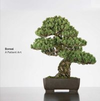 Bonsai A Patient Art