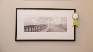 Booth #400, Anne Loucks Gallery: A photograph of foggy park scene by photographer Lyle Gomes.