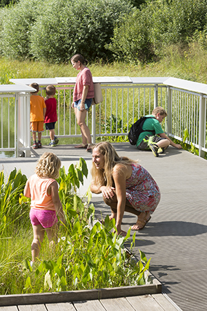 PHOTO: Kids and families explore the Kleinman Family Cove.