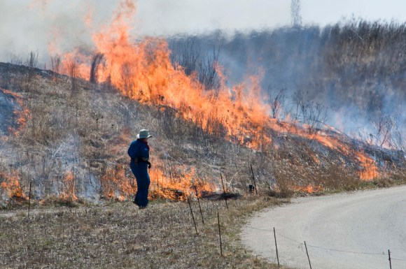 PHOTO: Chicago Botanic Garden ecologist Joah O'Shaughnessy monitors a prairie burn.