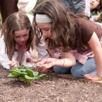 PHOTO: Girls study botany on a field trip at the Garden.