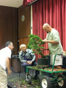PHOTO: Curator Chris Baker of the Chicago Botanic Garden trims a bonsai, under the watchful eyes of Jack Sustic (far left) and bonsai master Harry Hirao (seated).