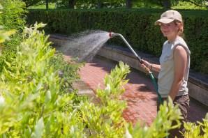 PHOTO: Mel Jensen, 2013 Horticulture Intern