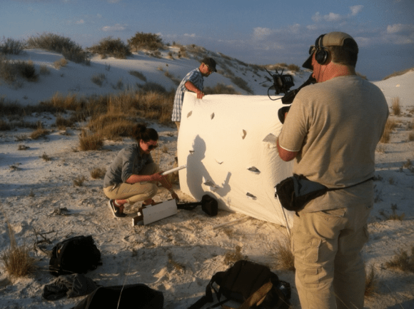 PHOTO: Cameraman filming the moth trap setup as the sun sets on the dunes.