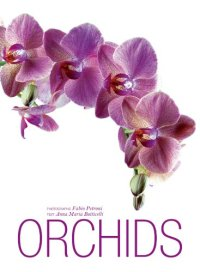 Orchids by Fabio Petroni and Anna Maria Botticelli