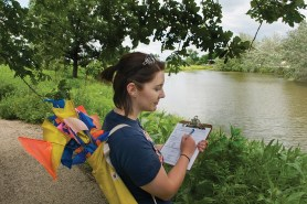 PHOTO: An intern carries a quiver full of marking flags, and takes notes on her clipboard.
