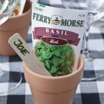 """PHOTO: a small plant pot with seed packet and row marker labelled, """"Joe"""" is used as a name card at the table."""