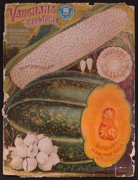 PHOTO: Cover of Vaughn's seed catalog, featuring Osage musk melon.