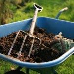 PHOTO: Wheelbarrow with mulch.