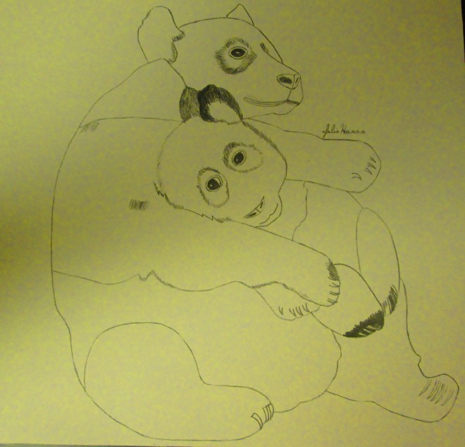 Beginning the drawing of the panda bears.