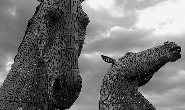 15. Horses, Falkirk, Scotland