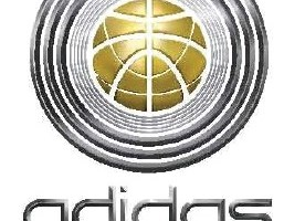 Johannesburg to Host Basketball Experience for Top High School Players