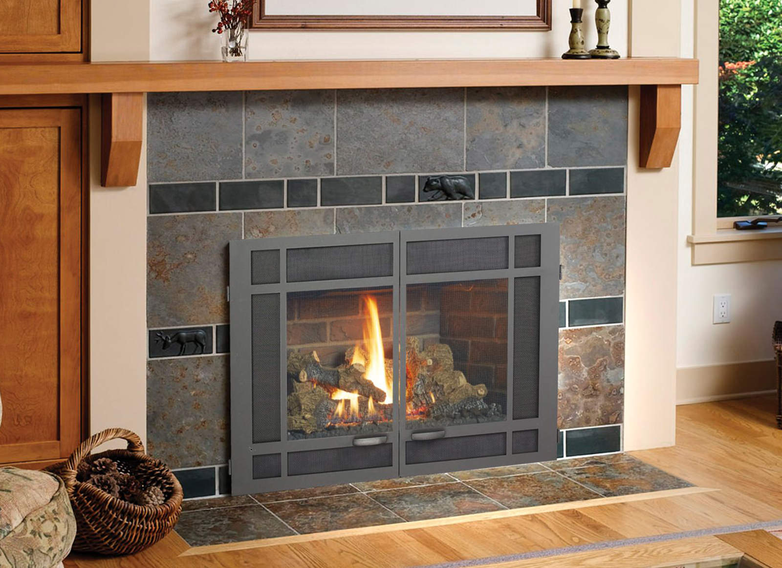 Gas Inserts For Fireplaces Chimney Pro Nw Georgia Ne Alabama Tennessee Gas Fireplace Inserts