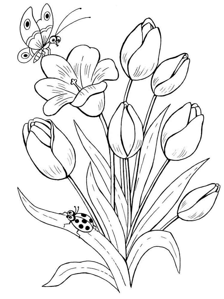 Lampara Naruto Tulip Coloring Pages. Download And Print Tulip Coloring Pages