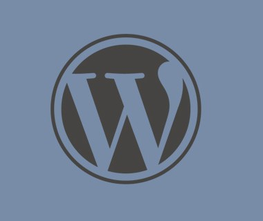 WordPress 3.7 (Actualizaciones automáticas)