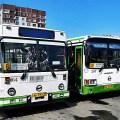 Pskov Bus