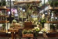 New window display at our flower shop  My Darling Flowers