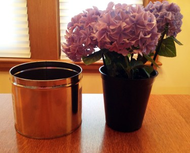 Container And Flower