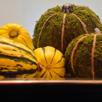 DIY Moss Covered Pumpkins